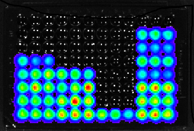 96 well plate with glowing M. tuberculosis being treated with different amounts of a group of experimental compounds. Black wells are where the bacteria have been killed, while the coloured wells show the different light levels of the bacteria that are still alive (ranging from red for lots of light to blue for a little light).
